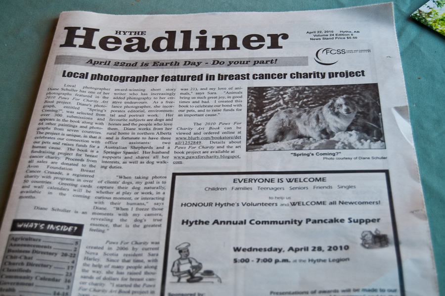 front page of newspaper Hythe Headliner