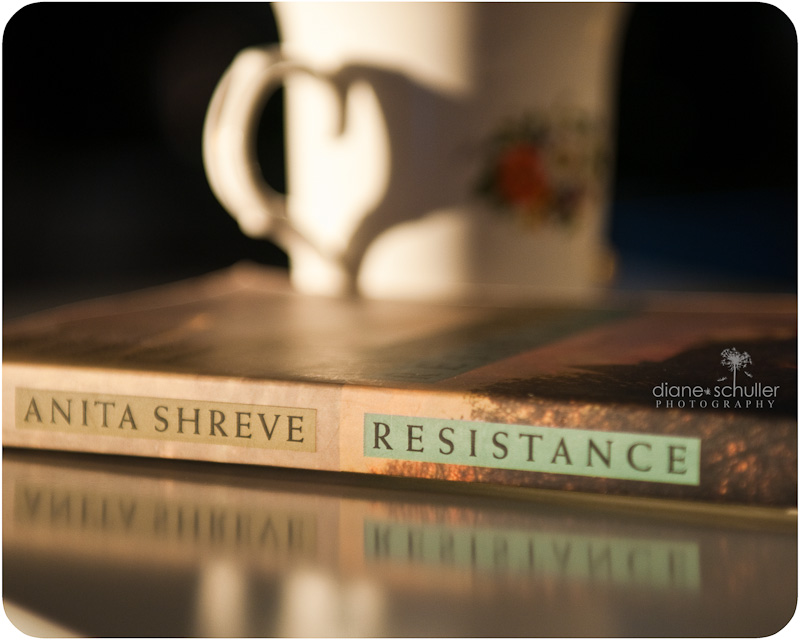 Novel by Anita Shreve paired with cup of tea © Diane Schuller