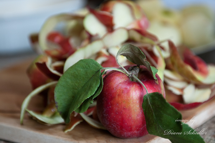apples by ©Diane M Schuller