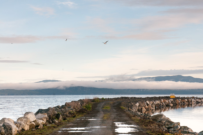 French Creek jetty, Parksville, BC